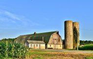 Delaware: HISTORICAL OVERVIEW _3.jpg