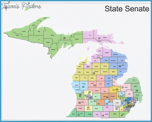 The Western Right: 2014 Michigan State Senate Elections