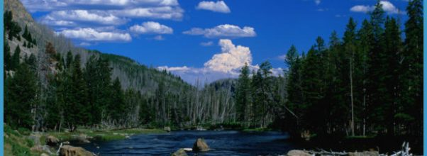 Top scenic drives around Yellowstone National Park - Lonely Planet