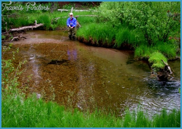 /Brown Trout/Mosquito Fly Fishing Report (in Pictures) – The Trout