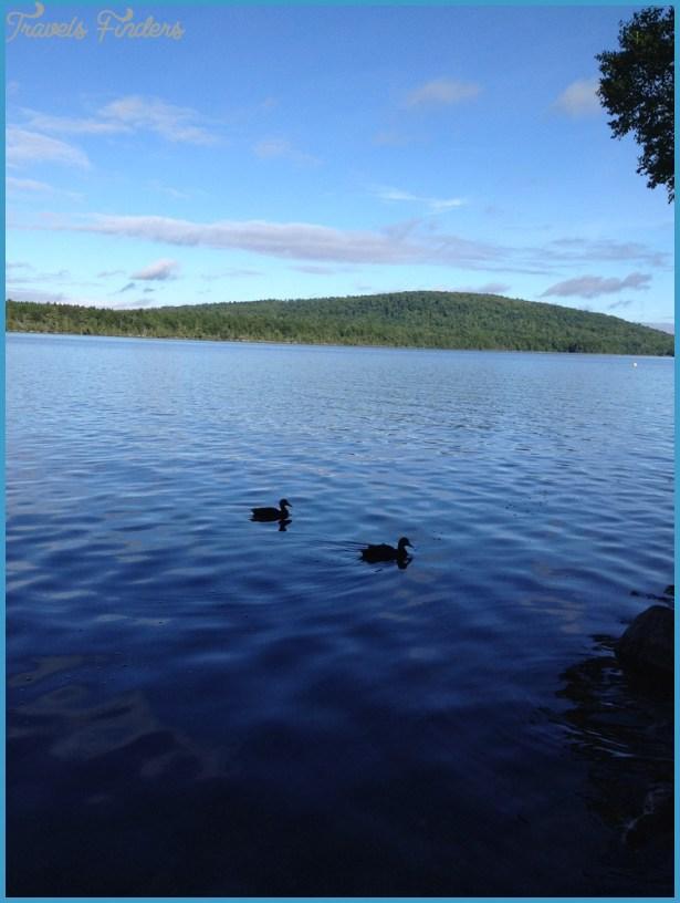 Ducks. East Grand Lake, Maine | Coolness | Pinterest