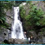 Living in the Rainforest: El Yunque National Forest