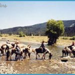 Swift Creek Outfitters/Teton Horseback Adventures - Wyoming Travel and