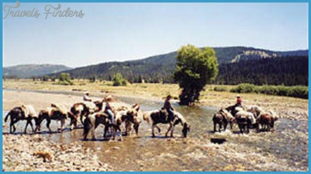 Swift Creek Outfitters/Teton Horseback Adventures - Wyoming Travel and ...