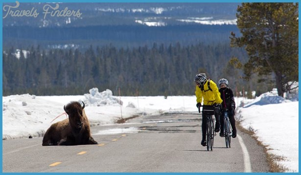 Spring bicycling from West Yellowstone in April, when the roads open ...