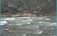 Goose Creek (Potomac River)