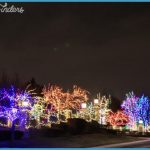 Little Cuppa Tea: Christmas Nights in Utah