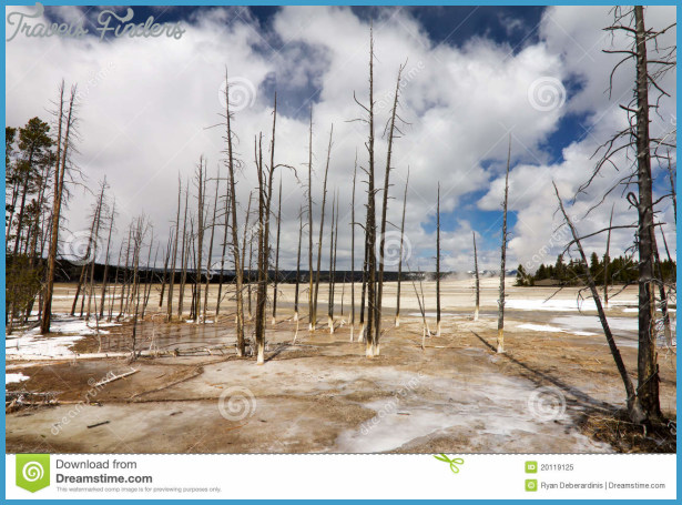... in the barren wasteland of a Yellowstone geyser field in Wyoming USA