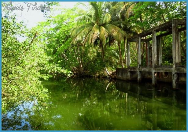 las cabezasde san juan nature reserve 17 Las Cabezasde San Juan Nature Reserve