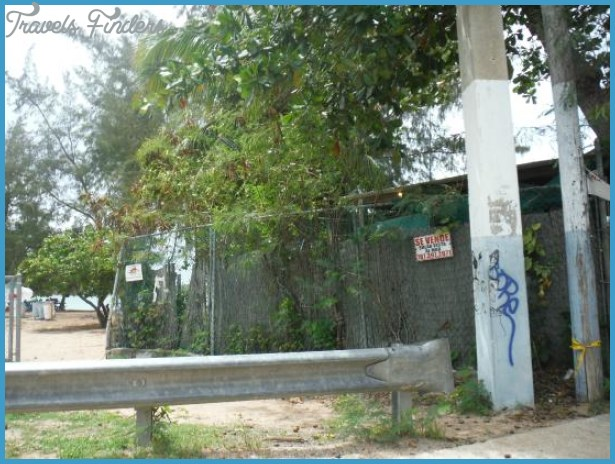 las cabezasde san juan nature reserve 39 Las Cabezasde San Juan Nature Reserve