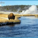 YNP- Madison Junction to Old Faithful Village Route - a gallery on