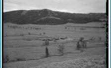 - Lamar Buffalo Ranch, East of Tower Roosevelt on Northeast Entrance