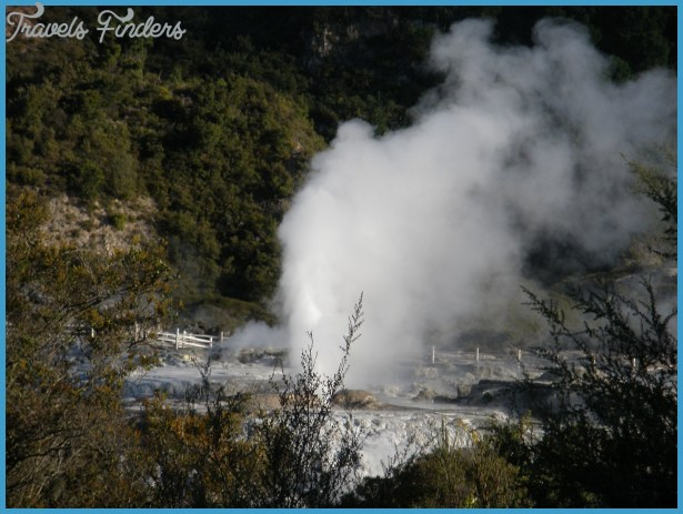 home to many geysers pohutu geyser is the most famous one erupting