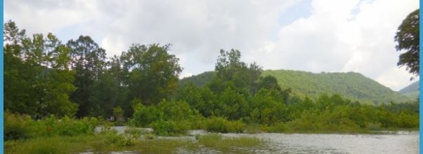 Panoramio - Photo of Minear Run, Cheat River, St. George WV