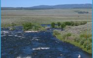 Madison River | A River Runs Through It | Pinterest