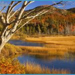 Upper Hadlock Pond by Brian Jannsen