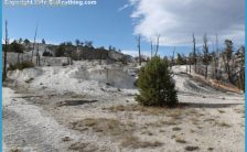 Angel Terrace Along The Upper Terrace Drive In The Mammoth Hot Springs