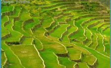 What Makes Banaue Worth Visiting | Trip the Islands | Travel the Best