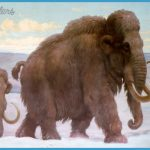 PHOTO: Woolly Mammoths in Late Pleistocene time, 100,000 years ago