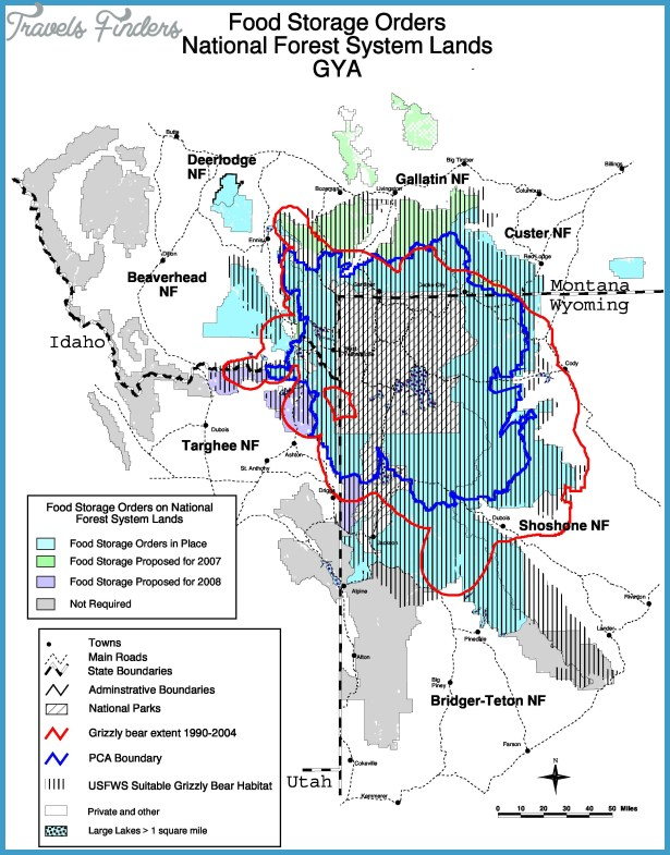 bears in the greater yellowstone area bear management units and