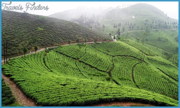 Tourist destinations in Bengal, west bengal tourism, Darjeeling tours