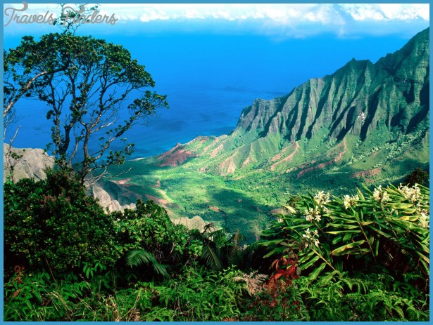 Hawaii-Valley.jpg