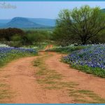 texas-hill-country_places-visit-usa-during-summer.jpg