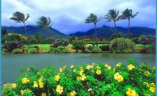 maui_tropical_plantation.jpg