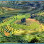 sapa-terraced-fields.jpg