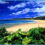 Writers-Groups-in-Hawaii.jpg