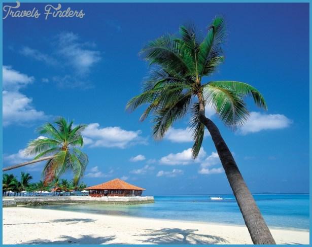 caribbean-island.jpg