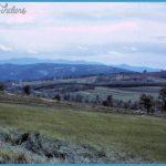 Nis_2_Countryside_g.jpg