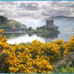 Scotland-nature.jpg
