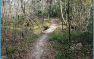 FLORIDA TRAIL_6.jpg
