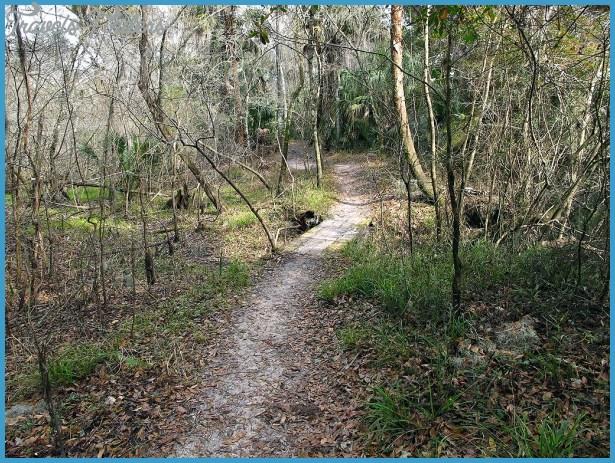 FLORIDA TRAIL_6.jpg