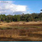 GOLD HEAD BRANCH STATE PARK MAP FLORIDA_6.jpg
