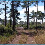 JONATHAN DICKINSON STATE PARK MAP FLORIDA_5.jpg