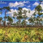 JONATHAN DICKINSON STATE PARK MAP FLORIDA_7.jpg
