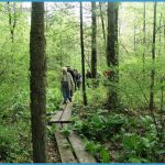 NORTH COUNTRY TRAIL_12.jpg