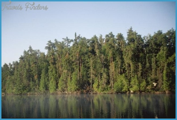 STATE FORESTS IN MINNESOTA_7.jpg