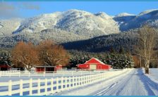 Travel to Montana _6.jpg