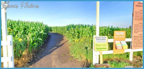 Edmonton Corn Maze Map_8.jpg