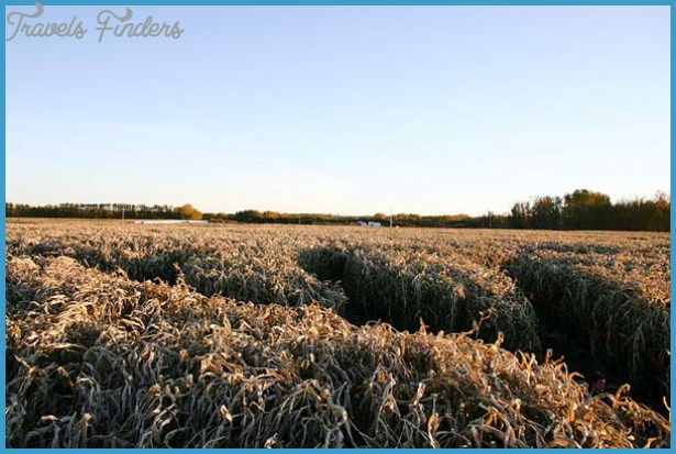 Lacombe Corn Maze Map Edmonton_14.jpg