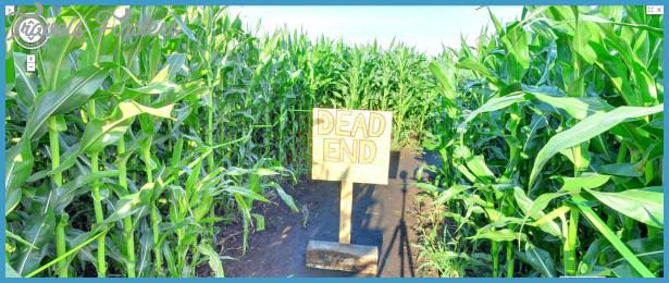 Lacombe Corn Maze Map Edmonton_28.jpg