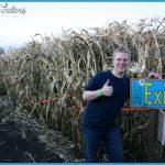Lacombe Corn Maze Map Edmonton_30.jpg