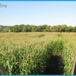 Lacombe Corn Maze Map Edmonton_32.jpg