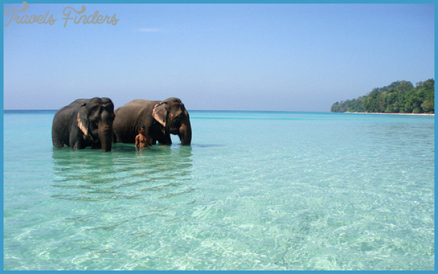 Best Places to Visit in Sri Lanka_3.jpg
