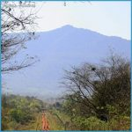 Departamento Alto Paraguay - The Pantanal_14.jpg