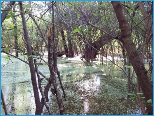 Parque Nacional Teniente Enciso_1.jpg