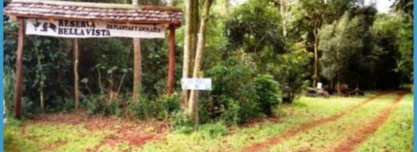 Parque Nacional Teniente Enciso_10.jpg